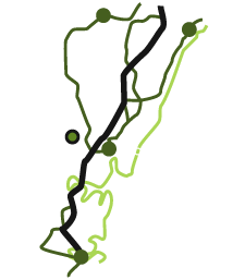 Mangrove Mountain is located between Sydney and Newcastle